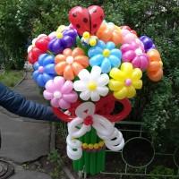 Букет из шариков 21 ромашка