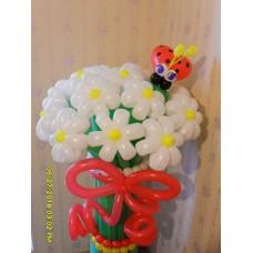 Букет ромашек из шаров белого цвета с божьей коровкой